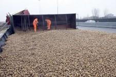 Verloren lading aardappelen
