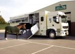 Paardentransport