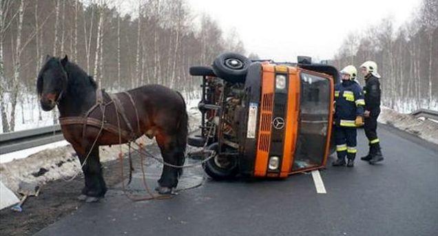 Boer spant paard voor vrachtwagen